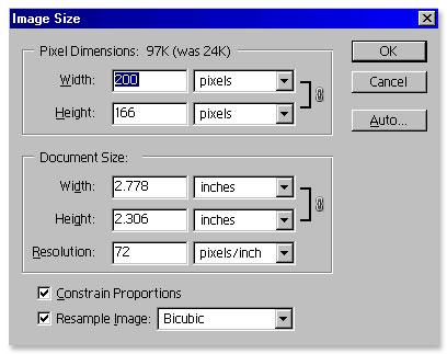 Screen shot of enlarging digital photo in Photoshop