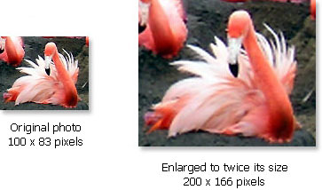 Comparison between original and enlarged digital photo